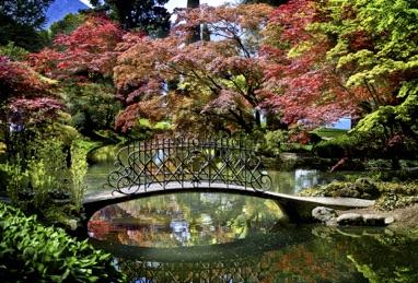Un giardino incantevole sul Lago di Como