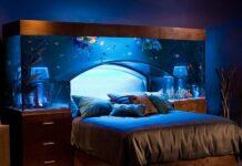 Il mondo subacqueo a casa nostra: vasca dolce o acqua marina
