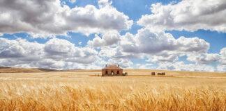 Le case più belle del mondo disperse nel nulla!