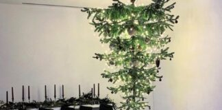 l'albero sottosopra di ariana grande