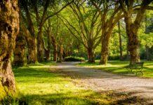 parchi e giardini d'inverno